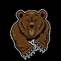 Terrible Bears