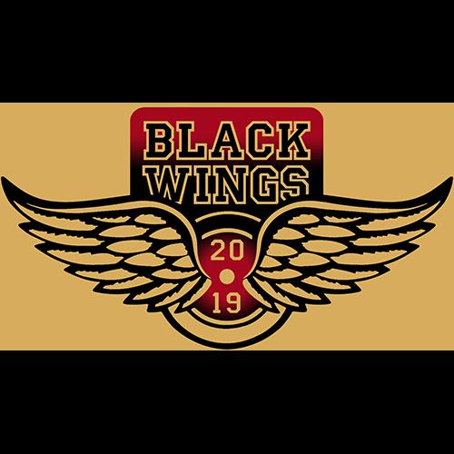 Black Wings HC