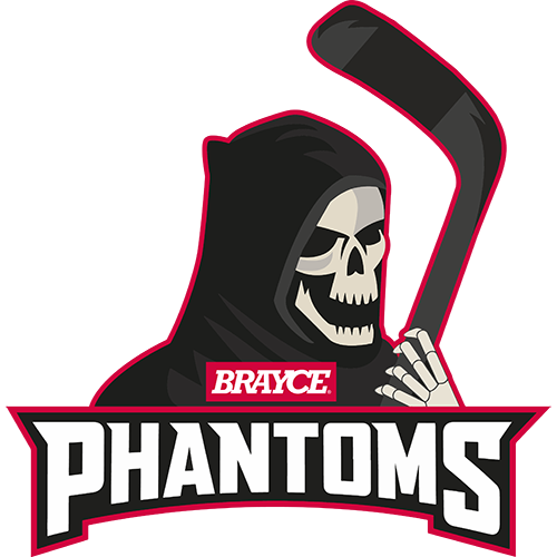BRAYCE Phantoms