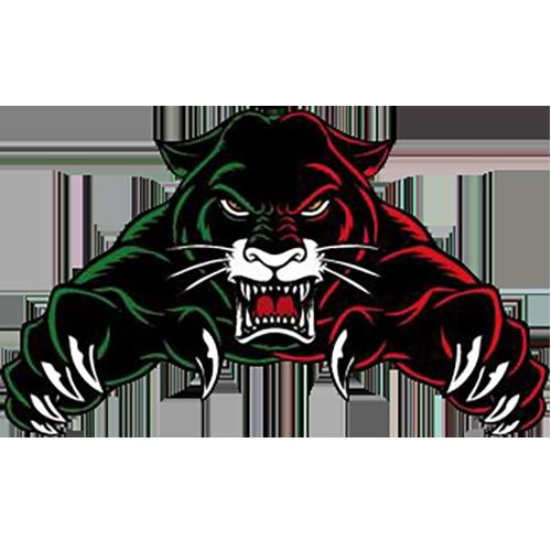 Augsburg Panther